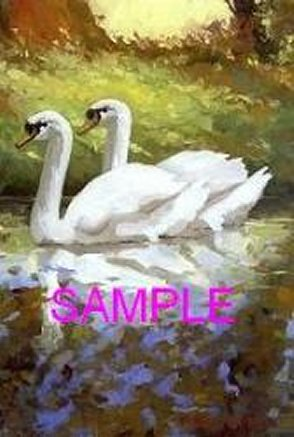 Swans by William Carl Bell
